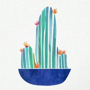 tiny-cactus
