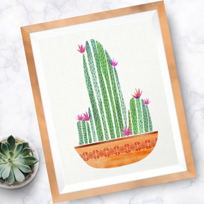 cactus-terra-cotta.jpg