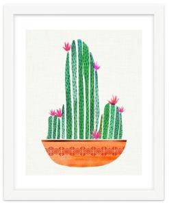 bowl-o-cactus