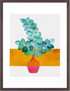 Eucalyptus-and-Sunshine