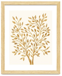 golden-ficus-frmaed