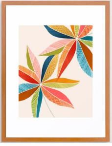 Multicolorful