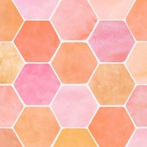 pinkorange-hex-wp