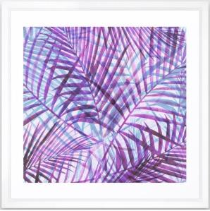 Purple-Palms