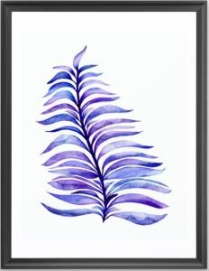 Royal-Purple-Fern