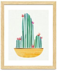 Tiny-Cactus-Blossoms