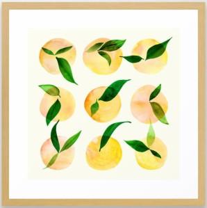 Wild-Lemons