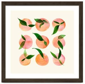 wild-orchard