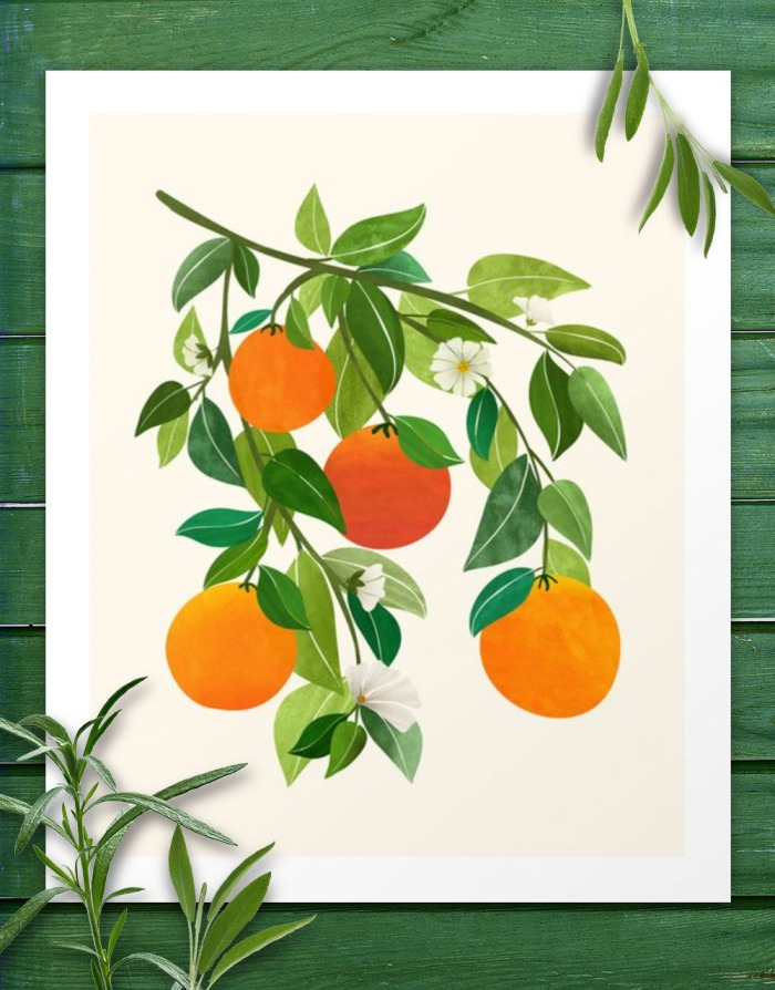 fruit-promo.jpg